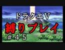 【ドラクエ5 縛りプレイ】天空への塔を進めるよ!あ、選択肢間違えた。Part45【アルカリ性】