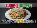 【録画】料理配信 第一弾!ドイツ人が炒飯を作る!