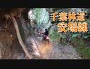 【千葉県林道】安場線奥の廃道?を逆から登ってみた!【VOICEROID車載】