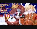 冠の雪原ポケモン縛りでポケモンソード「冠の雪原」実況プレイ!Part10