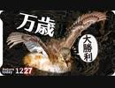 1227【バンザイダンス❤カイツブリ】鳩を蹴る子供に亀いじめ、カモメにパン…酷い。サザナミインコ水浴び、梅メジロ、カルガモ交尾【 #今日撮り野鳥動画まとめ 】 #身近な生き物語
