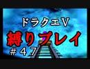 【ドラクエ5 縛りプレイ】さてさて、天空城へ向かいますか!Part47【アルカリ性】