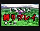 【ドラクエ5 縛りプレイ】迷いの森から妖精の村へ!おや、不穏な空気が…Part48【アルカリ性】