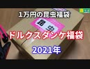 ドルクスダンケ福袋 2021年 【開封動画】 蟲ラボ