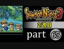 【サモンナイト3(2週目)】殲滅のヴァルキリー part65