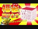 【福袋】開闢のピカピカボックス2021