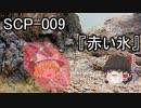 SCPを自分なりに解釈して説明してみる009【赤い氷】