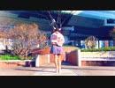 【ワッター】水曜日の約束【踊ってみた】ニコフェスエントリー動画