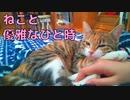 【癒し系ねこ】かわいいが止まらない…!猫と過ごす優雅なひと時に悶絶必至!