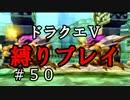 【ドラクエ5 縛りプレイ】ボブルの塔を攻略…レベル足りなさすぎ問題。Part50【アルカリ性】