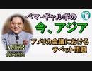 「アメリカ議会におけるチベット問題」ぺマギャルポ AJER2021.1.8(5)