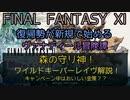 【FF11】森の守り神!ワイルドキーパーレイヴ解説!キャンペーン中はおいしい金策?