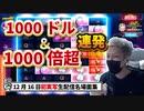 【オンラインカジノ/オンカジ】【BONS】スロット チェリーポップ&バーバリアン&ドックハウス 12月16日ダイジェスト
