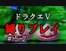 【ドラクエ5 縛りプレイ】レベリング兼ゴールド集めならあそこでしょ!(フラグ建設)Part52【アルカリ性】