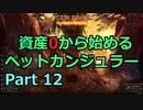 [Grim_Dawn] 資産0から始めるペットカンジュラー (ゆっくり実況) Part12