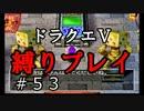 【ドラクエ5 縛りプレイ】戦略的装備集め回。現実逃避じゃないよ!Part53【アルカリ性】