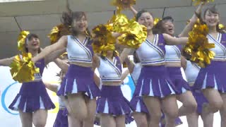 Cheerdance チア 上智大学インカレチアダンスサークル JESTY ソフィア祭2017