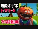 とんでもなく可愛いトマト登場!!!【フォートナイト】