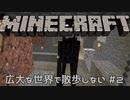 【実況プレイ】広大な世界で散歩する【Minecraft】【第八回】#2