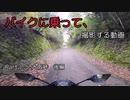 【バイク車載】バイクに乗って、撮影する動画 Part.2.5 大阪峠 後編【徳島県香川県】