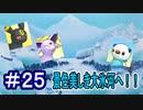 【実況】遂に到着!ロマン溢れる大氷河へ!!【ポケモン不思議のダンジョンマグナゲートと∞迷宮】 Part25