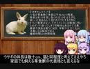 童話潛心倶楽部 第一考 【「ウサギとカメ」の話は真実なりや?】