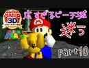 【スーパーマリオ3Dコレクション】はじめてのマリオ64 part10【女性実況】
