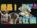 #8【激ウマ】厚岸産牡蠣を堪能!【北海道 鉄道でほぼ一周旅3日目】