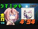 【鳴花ーずのホンキTA】タマミツネ ソロ太刀 4分54秒 《MHRise体験版》
