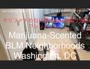 家族で時事放談w 146日目 マリファナの匂い漂うBLMの集う地区 ワシントンDC/我那覇動画の魅力  A marijuana-scented BLM district. Washington, DC