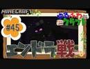 ゆるふわクラフト#45『いざ!エンドラ戦!』
