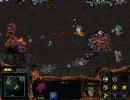 StarCraft日本語版 キャンペーン Z_04 エージェント 2/2