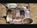 【ソロキャンプ】飯盒1つで焼肉定食