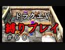【ドラクエ5 縛りプレイ】フリーズして失った分取り戻すぞ!Part60【アルカリ性】