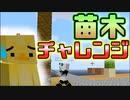 【Minecraft】ジャングルの木が消滅の危機!?#6【スカイブロック】
