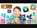 【インスタグラム】で動体視力テスト?リュウくん(ミニチュアダックス)を探せ!!