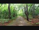長野散歩 - 安曇野公園