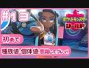 【ポケモン剣盾】ポケモン好きが、初めて種族値・個体値を意識し冒険!【実況】#13