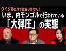 【南モンゴル草原の風 #35】「中国語教育」の裏で行われている、モンゴル人「大弾圧」の実態[R3/1/27]