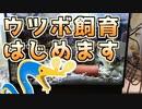 【ゆっくり】ウツボを飼うぞい!Part1【アクアリウム】