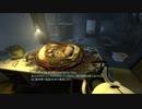 【Portal2】高所恐怖3Dアクション2 Part11【実況】
