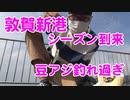 【サビキ釣り】アジ釣り放題!敦賀新港で大量の豆アジ!アジのシーズンです!