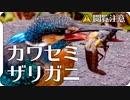 【閲覧注意】ザリガニがカワセミに食べられる