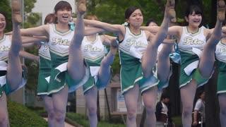 関東学院大学チアダンス部Fits 2014