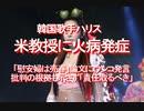 【みちのく壁新聞】韓国歌手ハリス、米教授に火病発症、「慰安婦は売春」論文にウ〇コ発言まで、批判の根拠も示さず「責任取るべき」