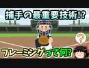 【初心者向け】 1から始める 野球統計 セイバーメトリクス ゆっくり解説 [第五回]【フレーミング】
