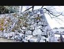 【滋賀県観光・SHIGA Travel】琵琶湖を見て、彦根城周辺をサイクリング@雪降る中、旧彦根港で軽く釣りもする【VLOG・Black Shark 3】