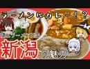 【成仏動画】新潟5大ラーメンの魅力をゆっくり解説・紹介【2/3】