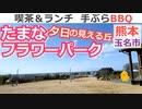 【熊本 玉名】たまなフラワーパーク キャンプ場(横島町)を紹介