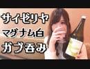 【のみログ】サイゼリヤでマグナムボトルをひとりで爆飲